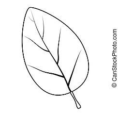 levél növényen, jelkép, vektor, árnykép, ikon, design.