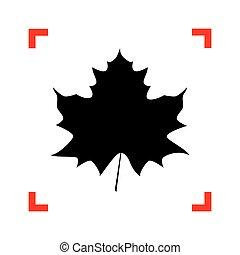 levél növényen, kanyarodik, cégtábla., összpontosít, black háttér, fehér, juharfa, ikon