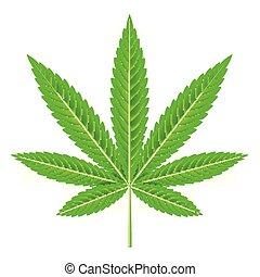 levél növényen, marihuána, ábra, elszigetelt, vektor, fehér