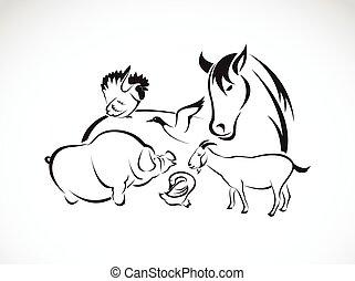 liba, csirke, ló, disznó, szamár, állhatatos, fehér, vektor, megművel állat, háttér, kacsa