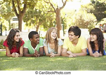 liget, emészt, csoport, tizenéves, fekvő