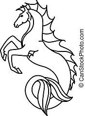 lineáris, tengeri ló, ábra, lakás