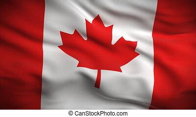 lobogó, kanadai, looped., hd.