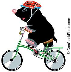 lovaglás, bycicle, karikatúra, móló