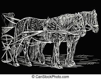lovak, hám, fekete, vektor
