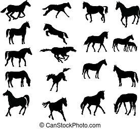 lovak, vector-silhouettes, különféle