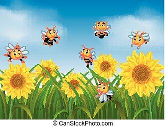 méhek, repülés, kert, napraforgó