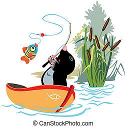móló, halászat