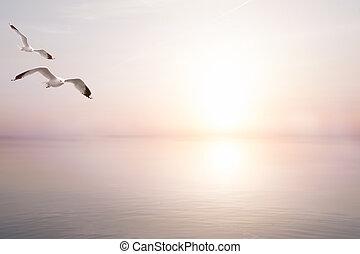 művészet, háttér, gyönyörű, elvont, nyár, fény, tenger