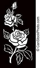 művészet, vektor, grafikus, virág, nyugat, rózsa