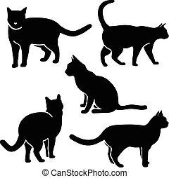 macska, árnykép, vektor