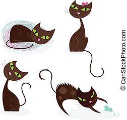 macska, beállít, különféle, 2, sorozat, barna