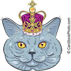 macska, brit, arany, vektor, fejtető