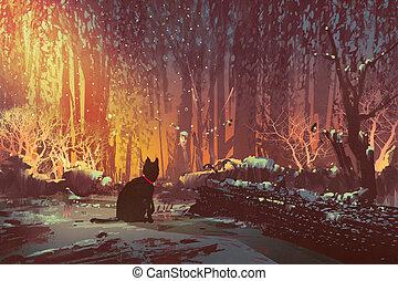 macska, elveszett, erdő