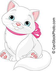 macska, kövér, csinos