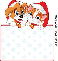 macska, karácsony, aláír, kutya