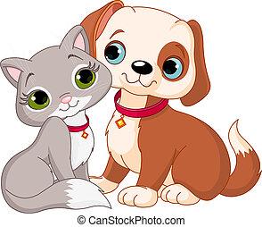 macska, kutya