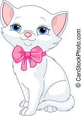 macska, nagyon, csinos, fehér