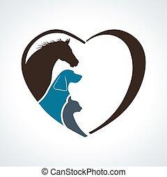 macska, szív, ló, love., kutya, együtt, állat