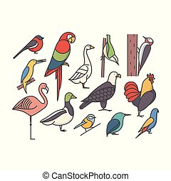 madár, áttekintés, ábra, állhatatos, vektor, háttér, fehér, ikon
