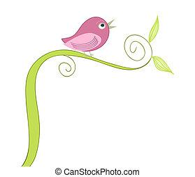 madár, csinos, éneklés