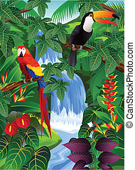 madár, tropikus