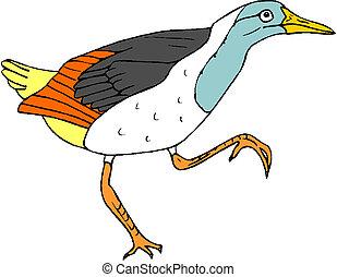 madár, vektor, ábra