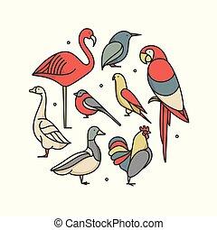 madarak, ábra, állhatatos, áttekintés, ikon, vektor, háttér., fehér