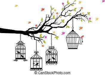 madarak, szabad, vektor, birdcages