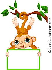 majom, birtok, fa, csecsemő, tiszta