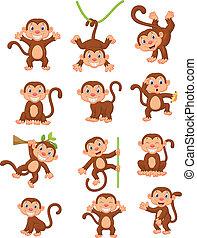 majom, boldog, állhatatos, gyűjtés, karikatúra
