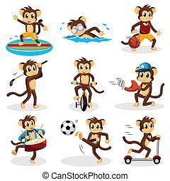 majom, elfoglaltság