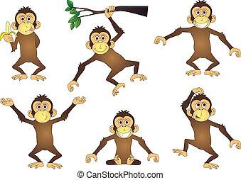 majom, karikatúra, gyűjtés