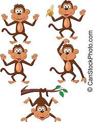 majom, karikatúra