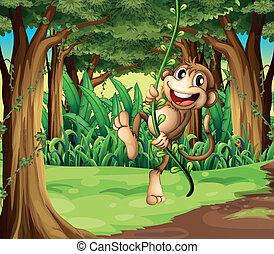 majom, szőlőtőke, bitófák, középső, ábra, játék, erdő