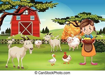 major állat, dolgozó, farmer