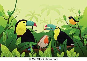 maradék, elágazik, madarak, fa