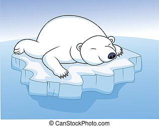 maradék, jegesmedve, jég