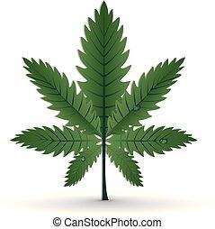 marihuána, vektor, levél növényen