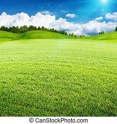 meadow., nyár, elvont, környezeti, tervezés, -e, táj