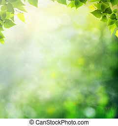 meadow., nyár, természetes, elvont, háttér, csoda, nap
