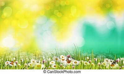 meadow., nyár, természetes szépség, elvont, háttér, nap