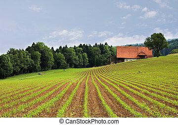 megfog, mezőgazdaság