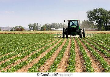 megfog, szántás, traktor