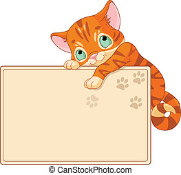 meghív, vagy, cica, csinos, plakát