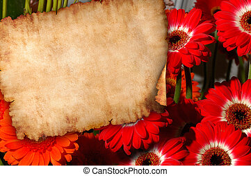 menstruáció, háttér, retro, levél, pergament