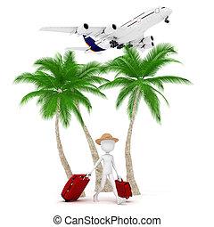 metafora, természetjáró, repülőgép, szünidő, ember, 3