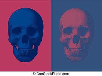 metszés, mód, koponya, szín, két, ábra