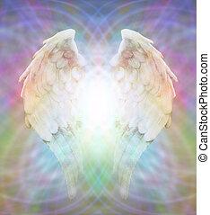 mező, angel szárny, matrica