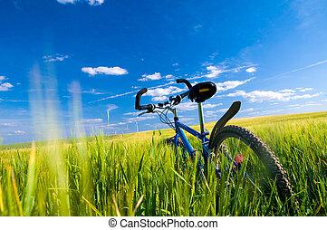 mező, bicikli